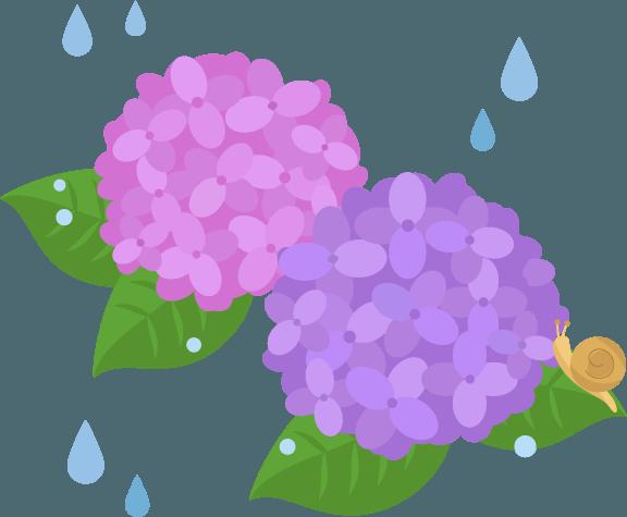 ピンクと紫の紫陽花とカタツムリのイラスト Illaletイラレット