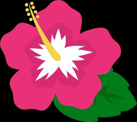 ハイビスカスのイラスト(ピンク)