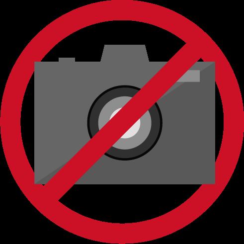 カメラ禁止アイコンのイラスト