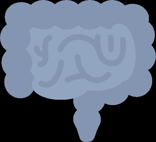 腸のイラスト(病気)1