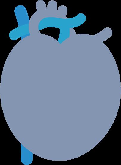心臓のイラスト(病気)1
