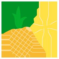 パイナップルのイラスト(輪切り)