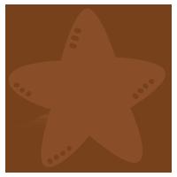 星型クッキーのイラスト