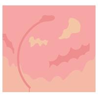 桃のイラスト(ピンク)