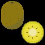 ゴールドキウイのイラスト1