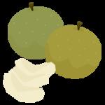 丸ごとの梨とカットされた梨のイラスト