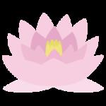 睡蓮(スイレン)の花のイラスト1