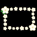プルメリアの花のフレームのイラスト