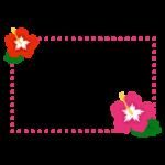 ハイビスカスの花のフレームのイラスト