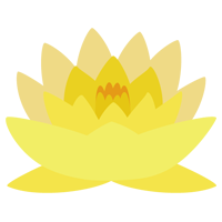 黄色の睡蓮(スイレン)の花のイラスト1