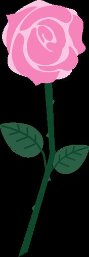 一輪のピンクのバラのイラスト