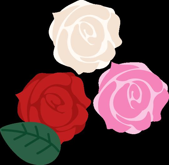 3色のバラのイラスト