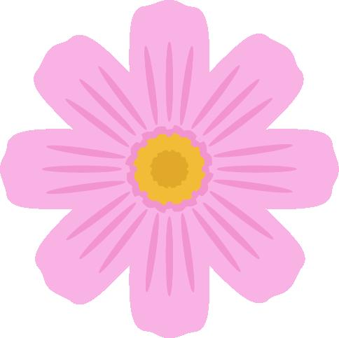 ピンク色のコスモスの花のイラスト