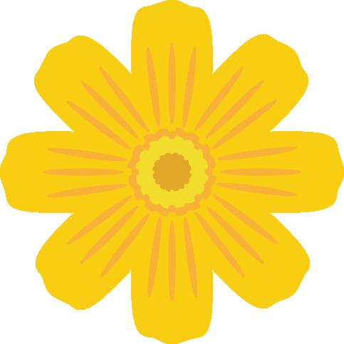 黄色のコスモスの花のイラスト