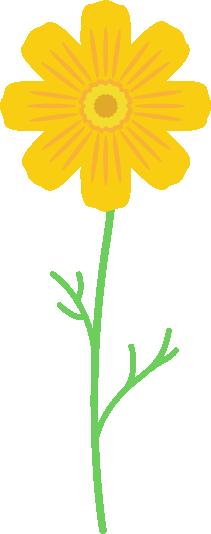 一本の黄色のコスモスのイラスト