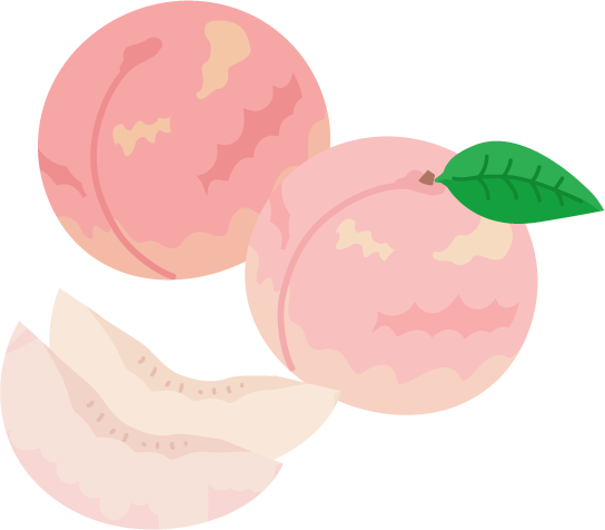 丸ごとの桃とカットされた桃のイラスト