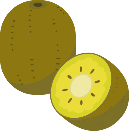 ゴールドキウイのイラスト2