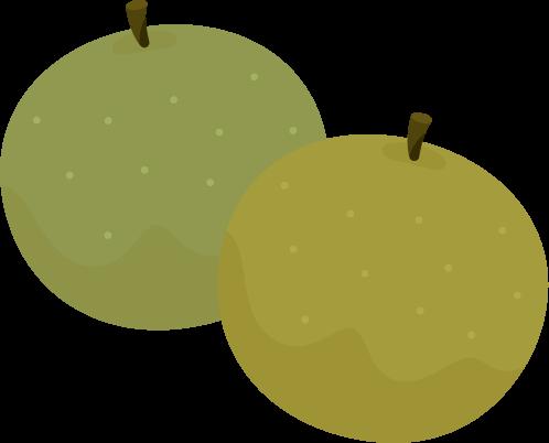 複数の梨のイラスト
