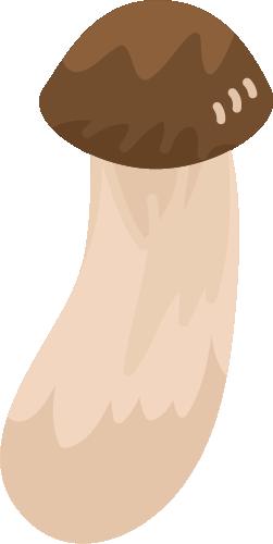 松茸のイラスト1
