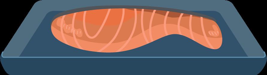 焼き鮭(切り身)のイラスト1