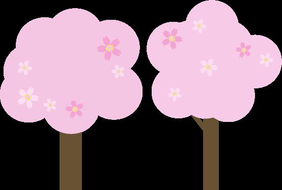 桜の木のイラスト3